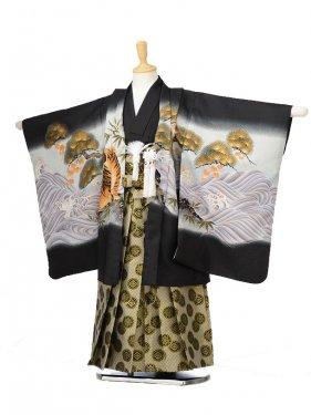 753レンタル(5歳男袴)0582黒地鷹と虎
