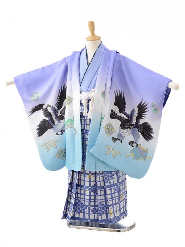 七五三(5男袴)0597パープル鷹