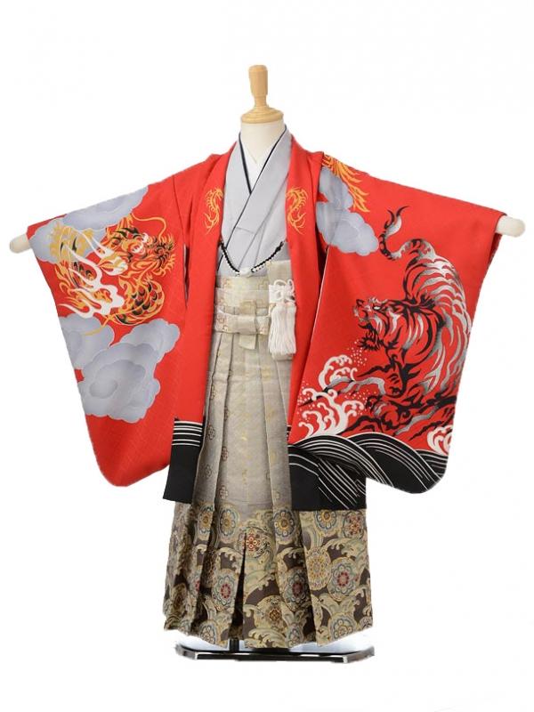 753レンタル(5歳男の子袴)0592花わらべ赤虎