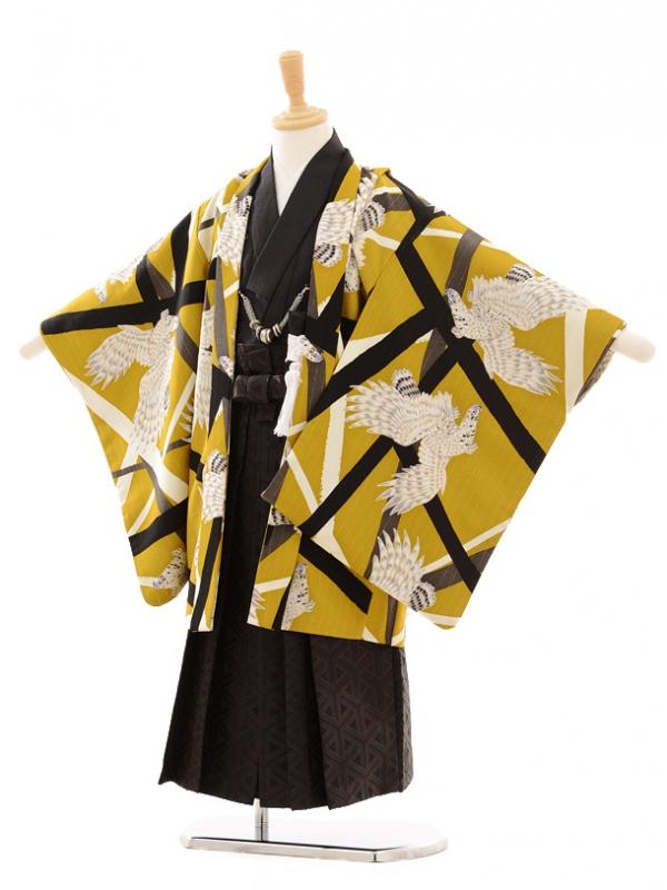 七五三(3男袴)0296 JAPAN STYLE 鷹/金茶×ラ