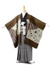 753レンタル(5歳男袴)0521茶祝い柄