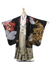 753レンタル(5歳男袴)0591花わらべ黒虎