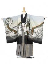 753レンタル(5歳男袴)0583薄グレー波と龍