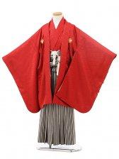 753レンタル(7歳男袴)0802赤×ベージュしま