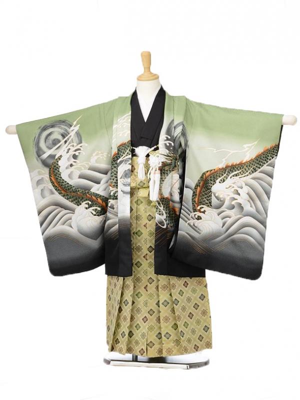 753レンタル(5歳男の子袴)0579グリーンと龍