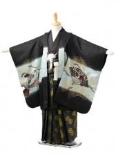 753レンタル(5歳男袴)0540黒鷹