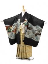 753レンタル(5歳男袴)0532黒鷹