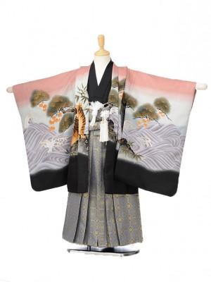 753レンタル(5歳男の子袴)0584ピンク鷹と虎