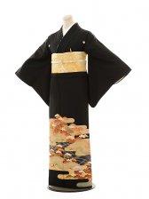 黒留袖E038 雲取りに赤松