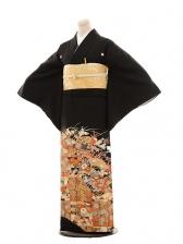 黒留袖レンタルE018 秋の花
