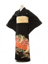 黒留袖レンタルE022 カゴメに鶴