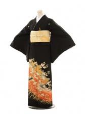 黒留袖E080 金菊
