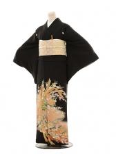 黒留袖レンタルE027 花熨斗目