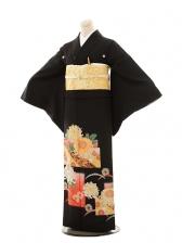 黒留袖レンタルE073 大輪菊