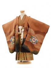 七五三(3歳男袴)A053 茶色獅子×金茶
