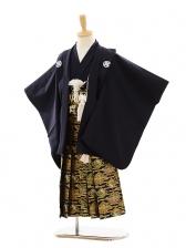 七五三(5歳男袴)A052 紺紋付×ゴールド菱
