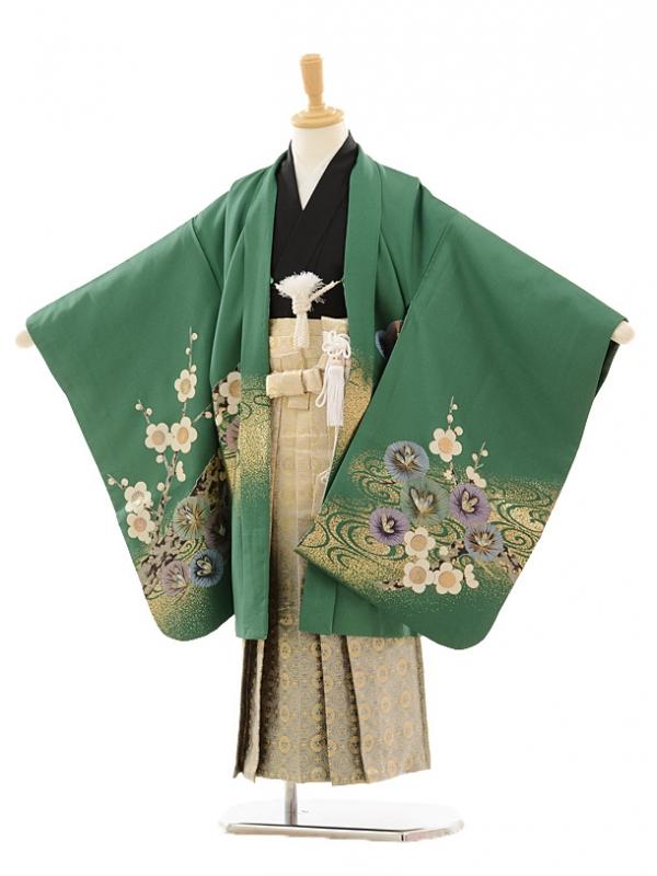 七五三(5歳男袴)A013 グリーン兜×ゴールドグレー