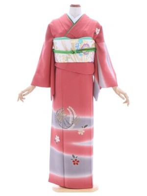 訪問着227ローズピンク若松桜