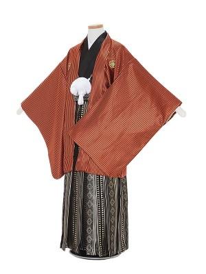 小学生卒業式袴男児0002 茶色ストライプ×黒金ダイヤ縞