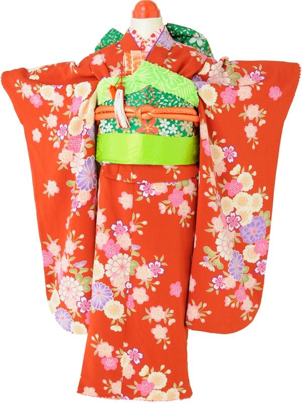 七五三(7歳女児)j715赤桜