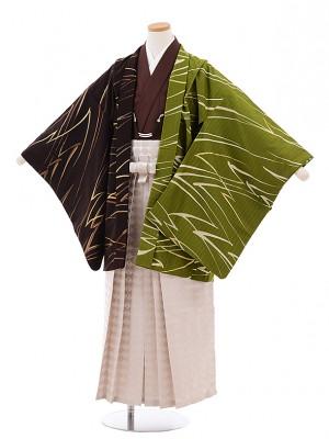 ジュニア袴男児Z048JAPANSTYLE茶グリーン×茶ベージュラメ菱袴