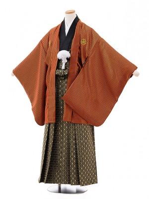 ジュニア袴男児Z021 オレンジストライプ 紋付×黒ゴールド袴