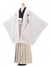 ジュニア袴男児9414白ゴールドドット紋付×ベージュ