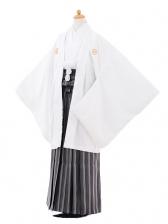 小学生卒業式袴男児9367白紋付×黒白縞袴