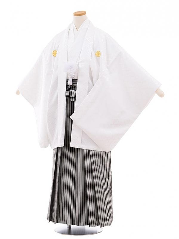ジュニア袴男児9444 白地菱柄紋付×白黒縞袴
