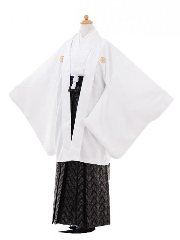 小学生卒業式袴男児9371白紋付×黒袴