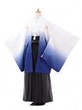 ジュニア袴男児9422白紺ぼかし紋付×黒縞袴
