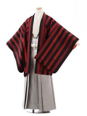 ジュニア袴男児9718 黒赤ジグザグストライプ×シルバー縞袴