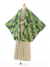 ジュニア袴男児9123緑変わり麻の葉×ベージュ袴