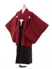 ジュニア袴男児9332エンジ色紋付×ダークグレーストライ