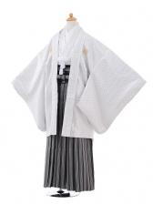 ジュニア袴男児9369白シルバー紋付×黒シルバー縞袴