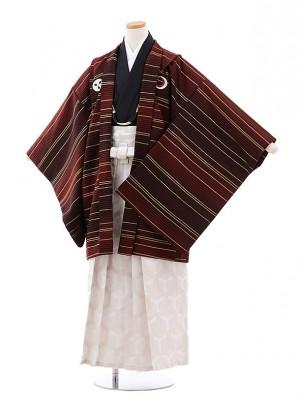 小学校 卒業式 男の子 袴 9716 九重 エンジしゃれ紋×オフ白袴