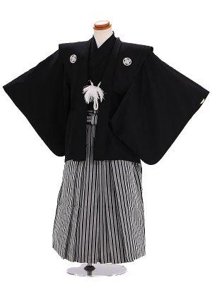 七五三レンタル(5歳男の子袴) 黒 縞 034