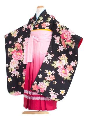 女児袴(7女) 9053 黒/ぼたん/袴