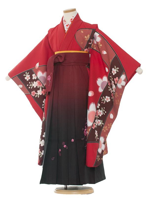 女児袴(7女) 9041 ワイン/桔梗/袴