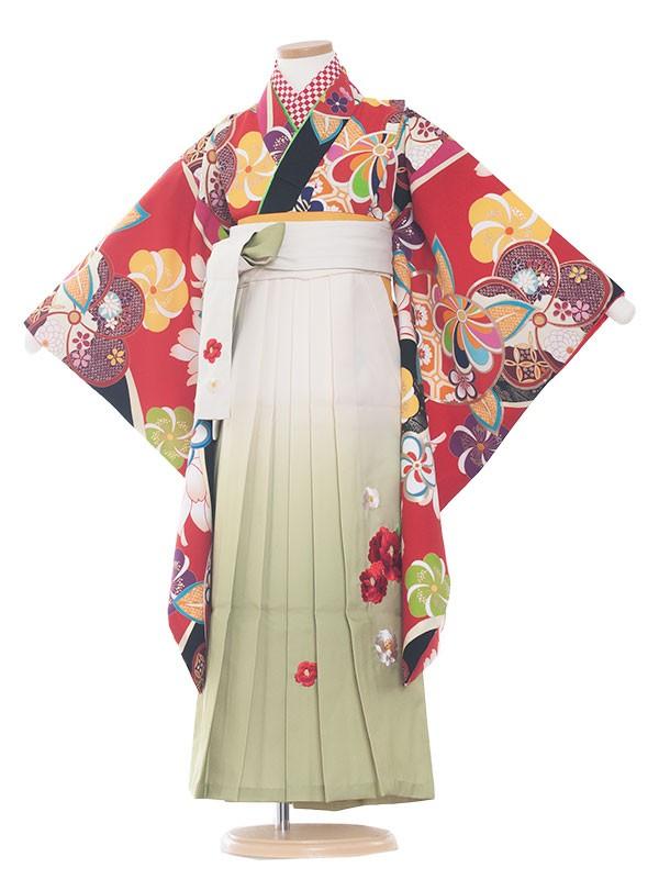 女児袴(7女)9146 赤地×レトロ小紋橘袴70