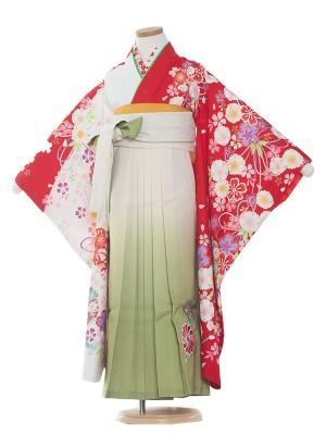 女児袴(7女)9191 赤地×白地/桜 /袴