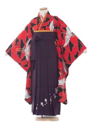女児袴(7女) 9015 赤地/鶴の舞/袴