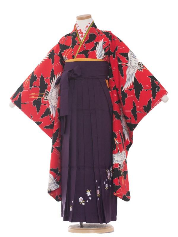 七五三(7女) 9015 赤地/鶴の舞/袴