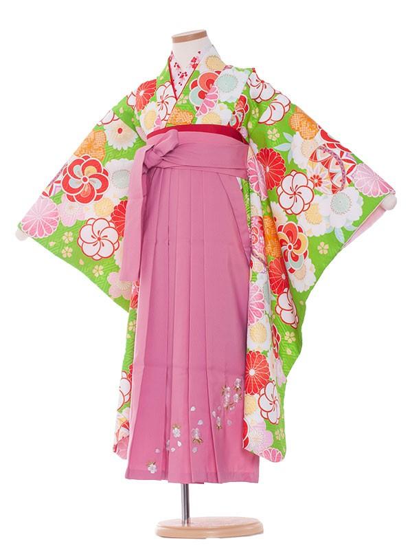 女児袴(7女)9130 黄緑地×梅菊毬袴65