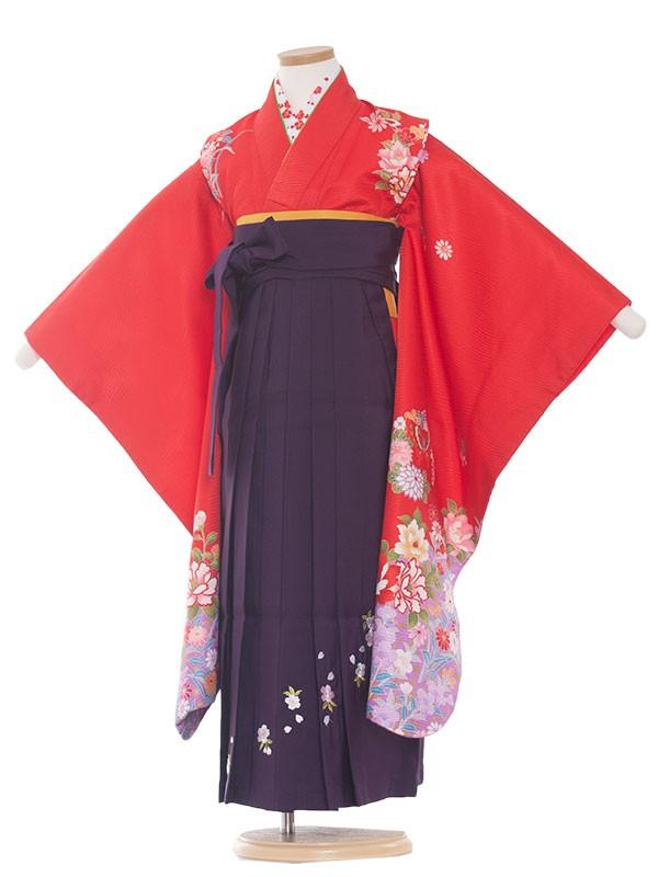 七五三・卒園式袴レンタル(7女) 9033 赤/蝶と花/袴