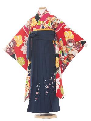 七五三レンタル(7歳女の子)9224 赤地/ねじり梅/紺袴