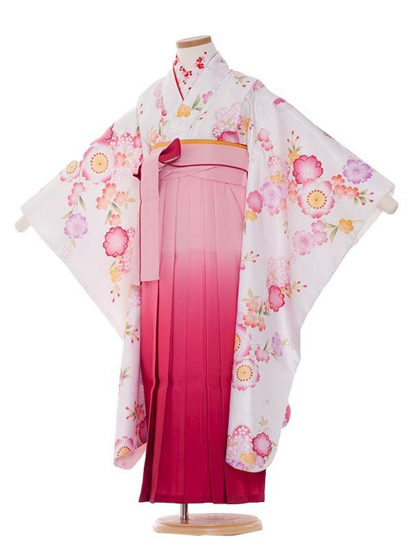 七五三(7女) 9054 白地/桜/袴