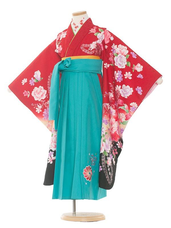 七五三・卒園式袴レンタル(7女)9104 赤黒×薔薇袴65