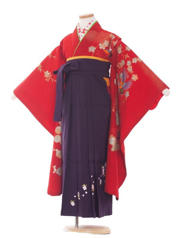 七五三・卒園式袴レンタル(7女) 9011 赤/紫袴