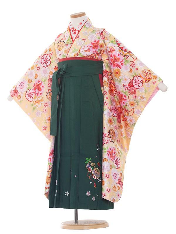 女児袴(7女)9094 黄華/グリーン袴65